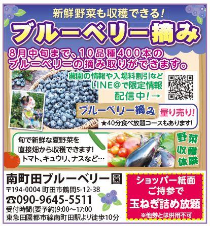 井上農園掲載広告