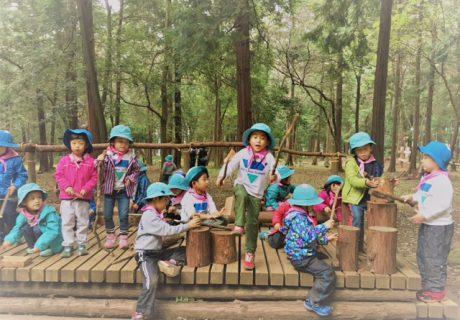 けやの森学園幼稚舎・保育園の画像